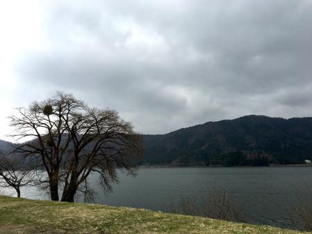 LakeYogo1